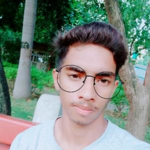 Abhishek kumar-Freelancer in Delhi,India