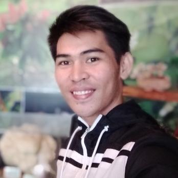 Ramel Dimaisip-Freelancer in Mandaue,Philippines