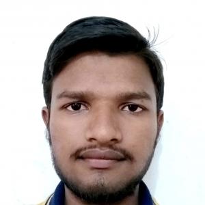 Rahul Bingi-Freelancer in Solapur,India