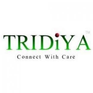 Team Tridiya-Freelancer in Colombo, Battaramulla,Sri Lanka