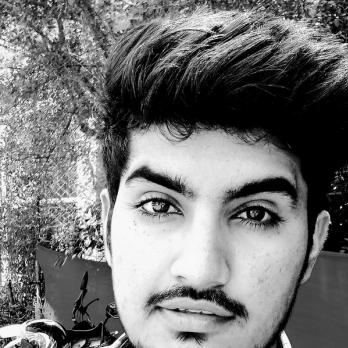 Vikram Meena-Freelancer in Biaora,India