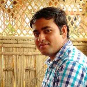 Debasis Jana-Freelancer in Kolkata,India