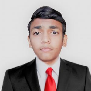 N Bhuva-Freelancer in ,India