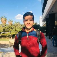 Mahmoud Samy-Freelancer in Benha,Egypt