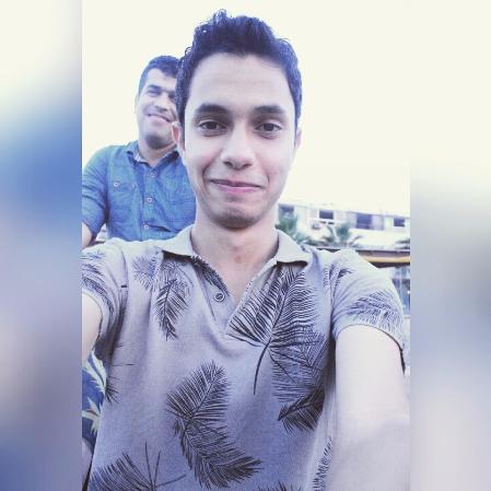 Sayed Ibraheem-Freelancer in ,Egypt