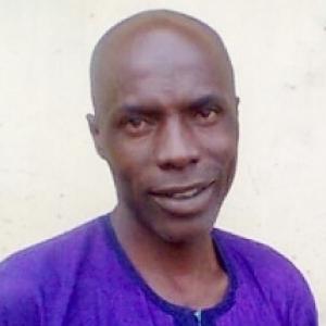 Ibrahim Abdulaziz-Freelancer in Lagos,Nigeria