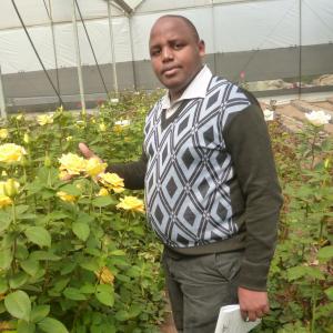 Benson Mbugua-Freelancer in Nairobi,Kenya