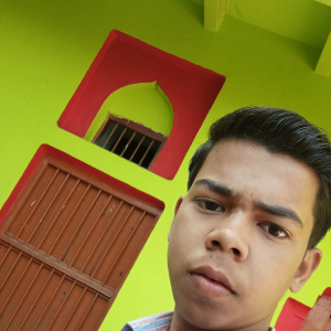 Niraj Kumar-Freelancer in ,India