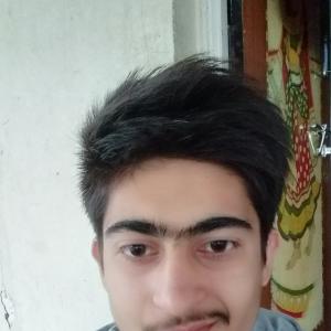 Ashish Bhanushali-Freelancer in ,India