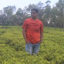 Jeevanandan Gurumoorthy-Freelancer in Chennai,India