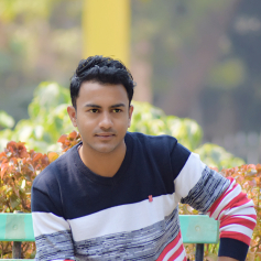 Yudhishtir Bhangale-Freelancer in Noida,U.P,India,India