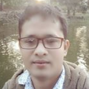 Dipak Kumar Singh-Freelancer in Kolkata,India
