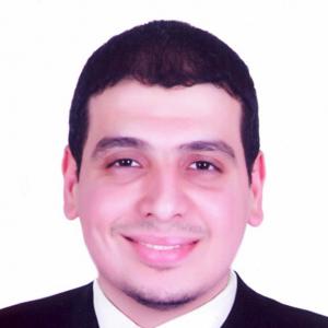 Emad Salem-Freelancer in Cairo,Egypt