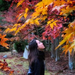 Pamela Kanoko-Freelancer in Japan,Japan