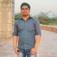 Ankit S. Parihar-Freelancer in New Delhi,India