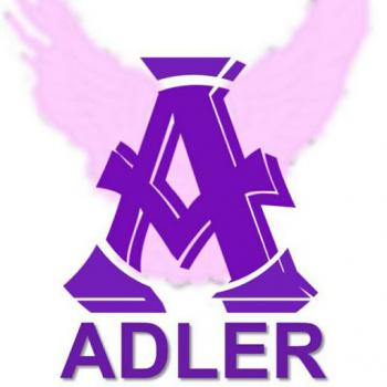 Adler Solution-Freelancer in ,Malaysia