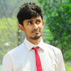 Kazi Ashique Elahi-Freelancer in Dhaka,Bangladesh