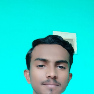 Mohammed Mohsin-Freelancer in Bangalore,India
