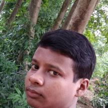 Soumen Mondal-Freelancer in ,India
