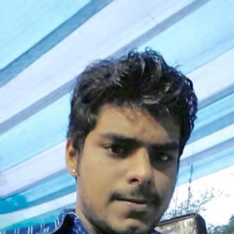 Himanshu Singh-Freelancer in New Delhi,India