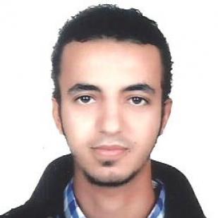 Mahmoud Elbokl-Freelancer in Cairo,Egypt