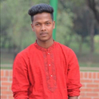 Md Rayhan Hossain-Freelancer in ,Bangladesh