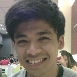 Ronald Baculi-Freelancer in Lipa City,Philippines