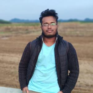 Md Muhimenul Tareque-Freelancer in Dhaka,Bangladesh