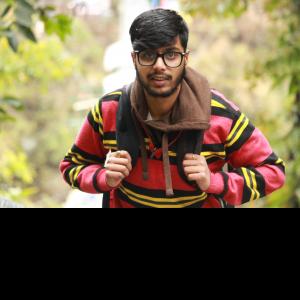 Krishab Bhattarai-Freelancer in Kathmandu,Nepal