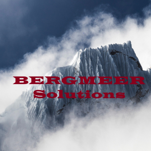 Bergmeer Solutions-Freelancer in Florida,USA
