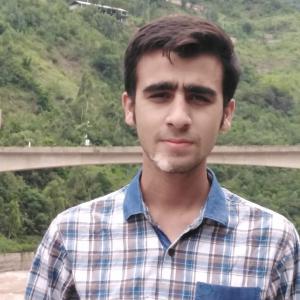 Muhammad Huzaifa Amir-Freelancer in Gujranwala,Pakistan