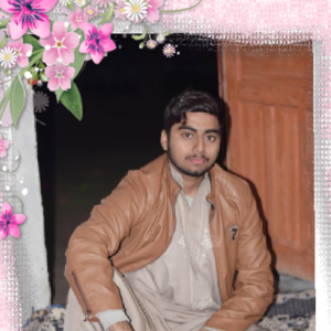 Zain Ul Abideen-Freelancer in Faisalabad,Pakistan