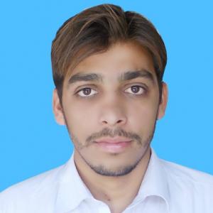 Tajjamal Raza-Freelancer in ,Pakistan