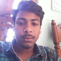 Game Stife Studios-Freelancer in Dharmapuri,India