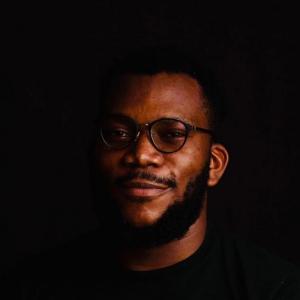Peter Aideloje-Freelancer in Lagos,Nigeria