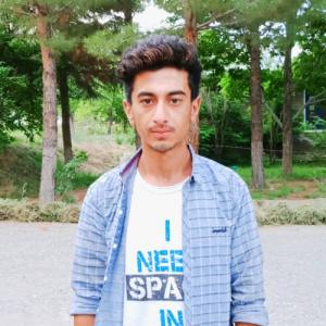 Zaheer Ali-Freelancer in islamabad,Pakistan