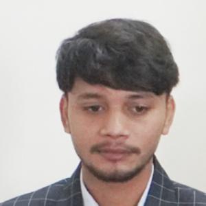 Praveen Kumar-Freelancer in Patna,India