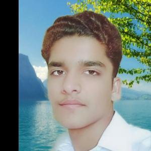 Malikajmal Malikajmal-Freelancer in Karachi,Pakistan