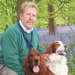 Steven Wickens-Freelancer in Canterbury, England,United Kingdom
