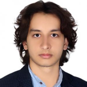 Hatef Hemati-Freelancer in Montreal,Canada