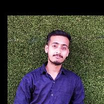 Manish Gupta-Freelancer in Kanpur,India