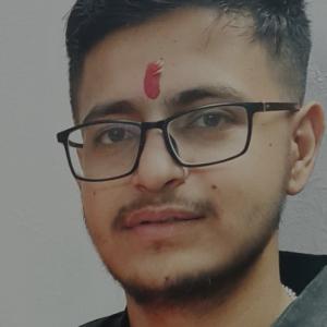 Dhiru Pareek-Freelancer in jaipur,India
