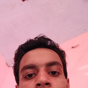 Vinay Mishra-Freelancer in Delhi,India
