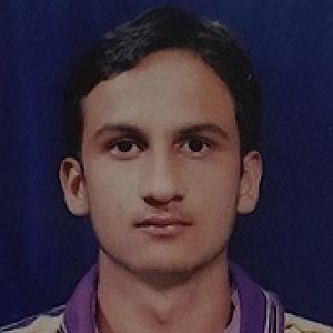 Nitin Kumar-Freelancer in Delhi,India
