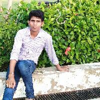Shriram Patel-Freelancer in Santej,India