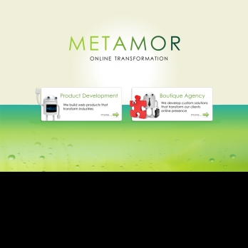 Meta Mor-Freelancer in Bengaluru,India
