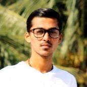 Dhruv Patel-Freelancer in Bharuch,India