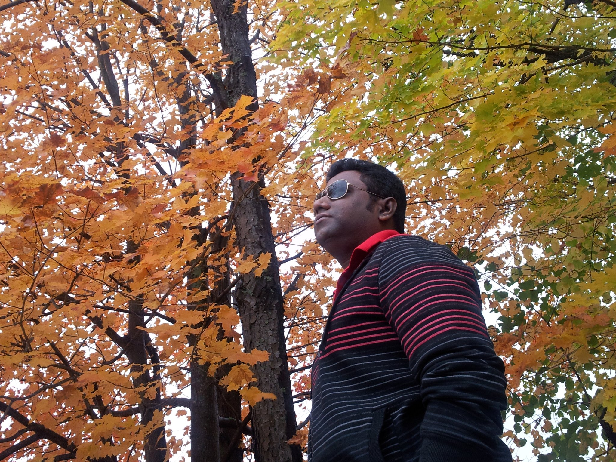 Ganesh Sundaramoorthy-Freelancer in Chennai,India