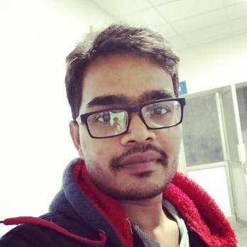 Ca Narendra Madaparthi-Freelancer in Chennai, Hyderabad, Bangalore,India