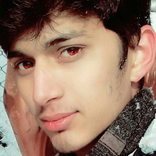 Ameer Hamza-Freelancer in Khushab,Pakistan